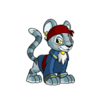 Kougra