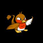 Pteri